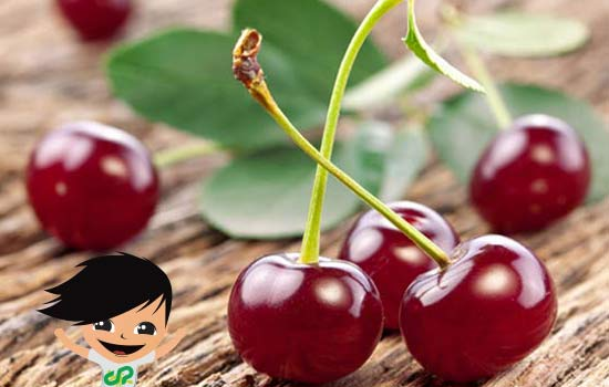 Good cherries from Fundão